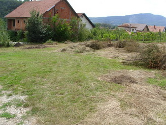 Plac-Aranđelovac-Boškovića kraj