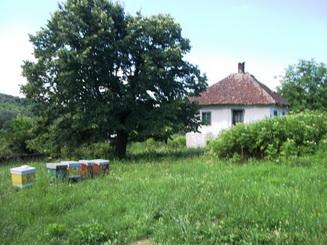 Seosko domaćinstvo-Topola